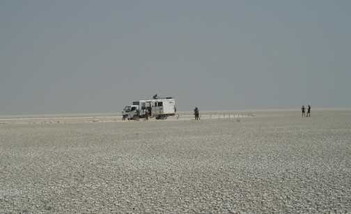 Etosha Salt Desert