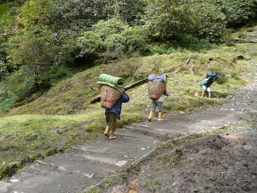 Porters on the wooden path on day 2 of the trek