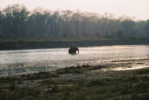 Chitwan Village Well