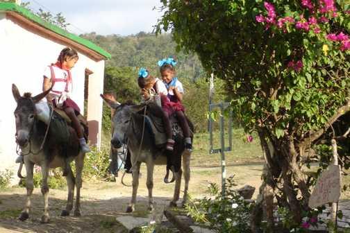 Giggling girls on donkeys.