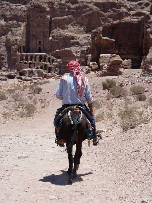 Beast of burden at Petra