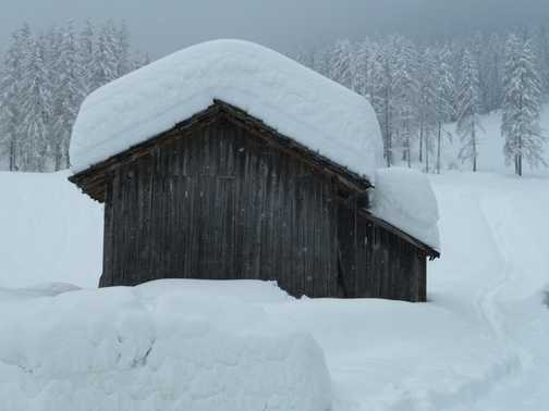 No shortage of snow on this holiday