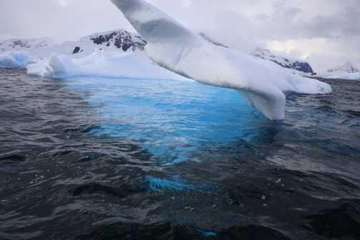 ice sculpter - whilamenia bay