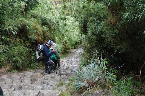inca trail steps