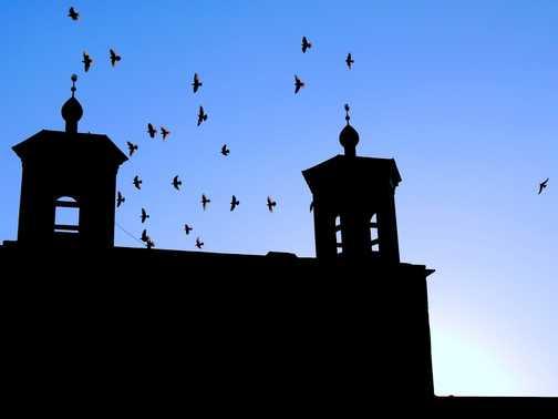 The world's most opulent pigeon coop . . . Shiraz.