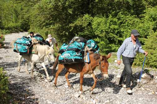 The kit bags taken on up ahead by horse - a great advert for Exodus!!