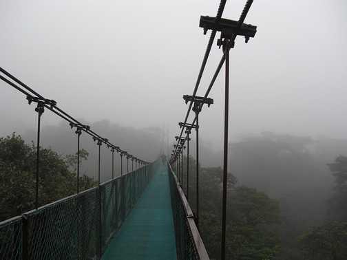 Monteverde, Sky bridge in Santa Elena cloud forest