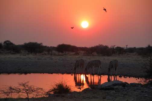 Sunset at Namutoni