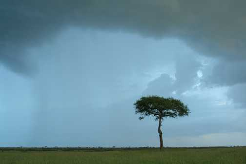 A storm gathers