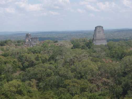 Birds eyeview of Tikal