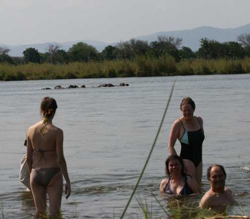 Bathing with hippos!