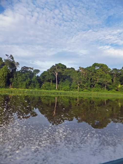 Tortuguero channel reflections