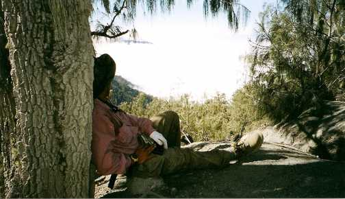 Ralph Rustam at elevation ca. 3000 meters leaning against a tree on the ascent, looking out at cloud