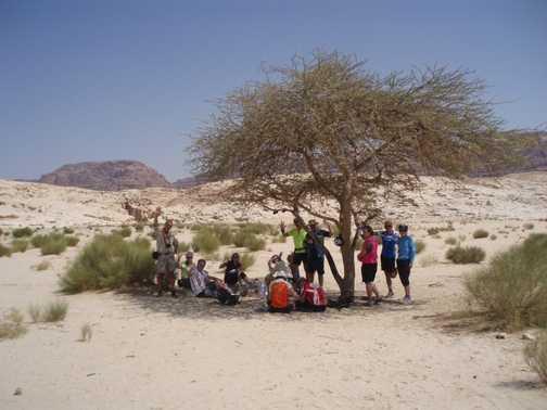Shade in the Desert