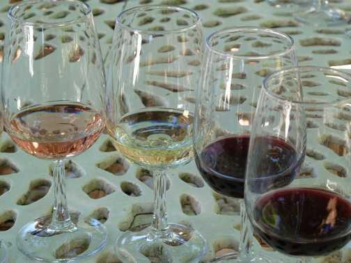 Wine tasting at Boschendal Estate