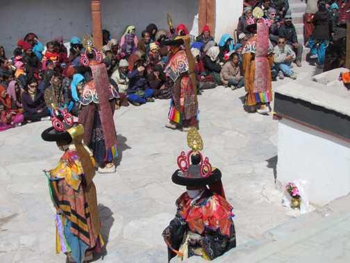 Ladakhi Urial