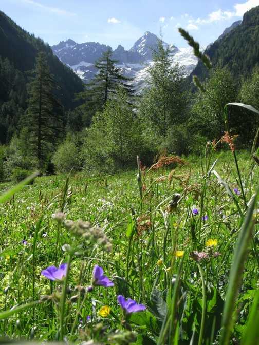 Mont Blanc Trip 2009