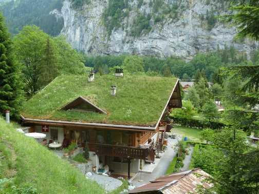 Unusual roof!