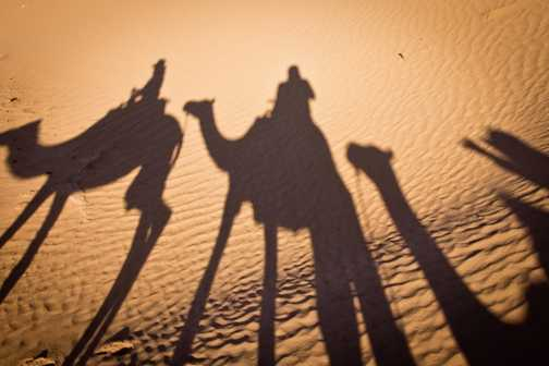 Camel ride_M'hamid_05