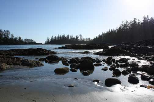 Windswept deserted beaches