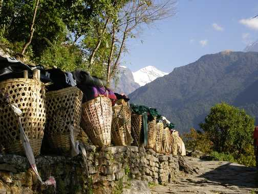 Trekking Baskets