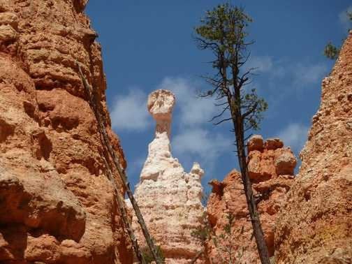 ET in Bryce Canyon