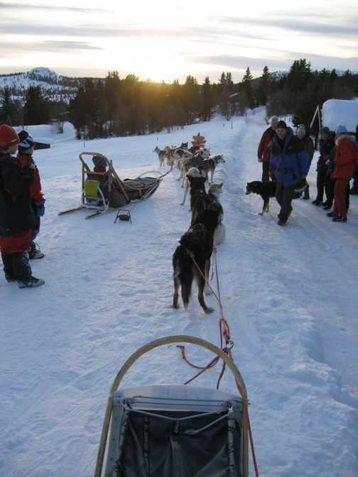 View from the back of the sled