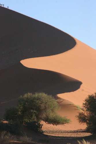 Namib Desert - Dunes