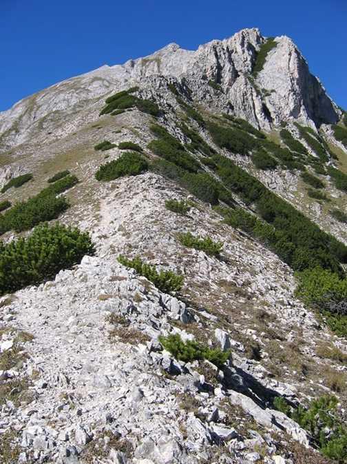 Trail to Mt. Vihren