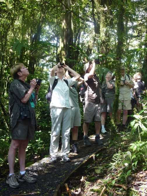 Our guide Johnny (centre) listens to what Jim (l) and Dave (r) have seen - Monteverde NP