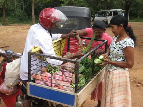 Mobile veggie vendor