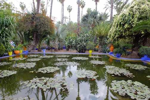 Jardin Majorelle 2