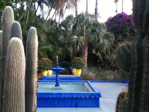 Indigo Blue, 'Le Jardins Marjorelle',(Yves St Laurent) Marrakech