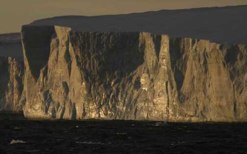Tabular icebergs glisten in the sun