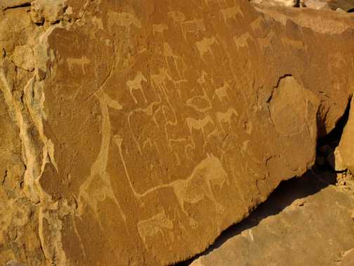 Ancient rock carvings