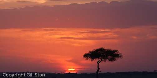 mara sunset