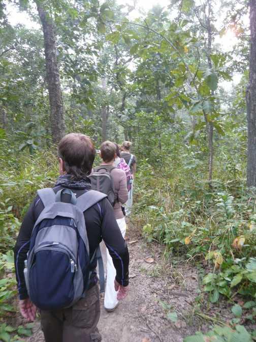 Jungle Walk, Chitwan