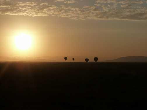 Mara at dawn