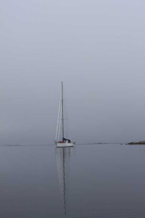 Sailing the Arctic.