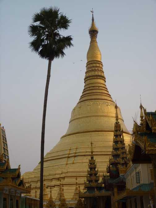 Shwedagon Pagoda at sunset