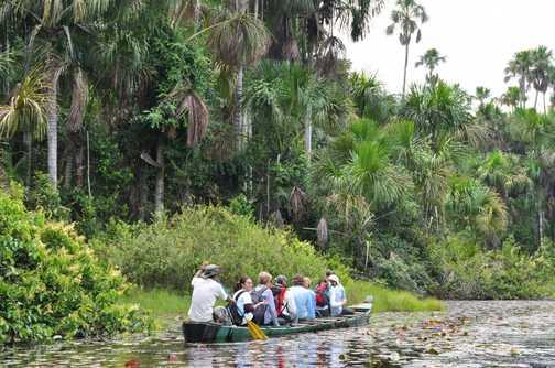 on the oxbow lake