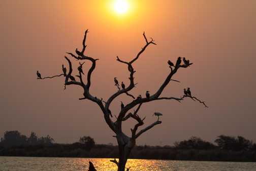Chokwe, Mozambique