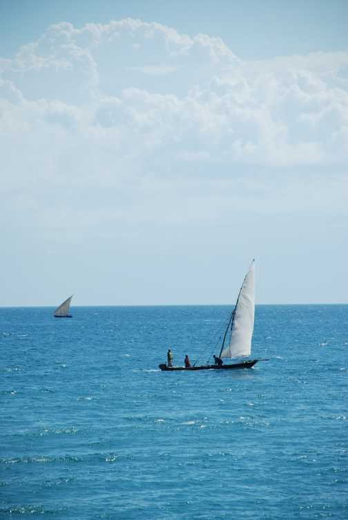 dhow fishing in Zanzibar