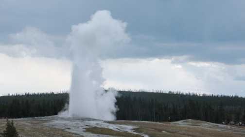Old Faithful geyser, Yellowstone National Park.