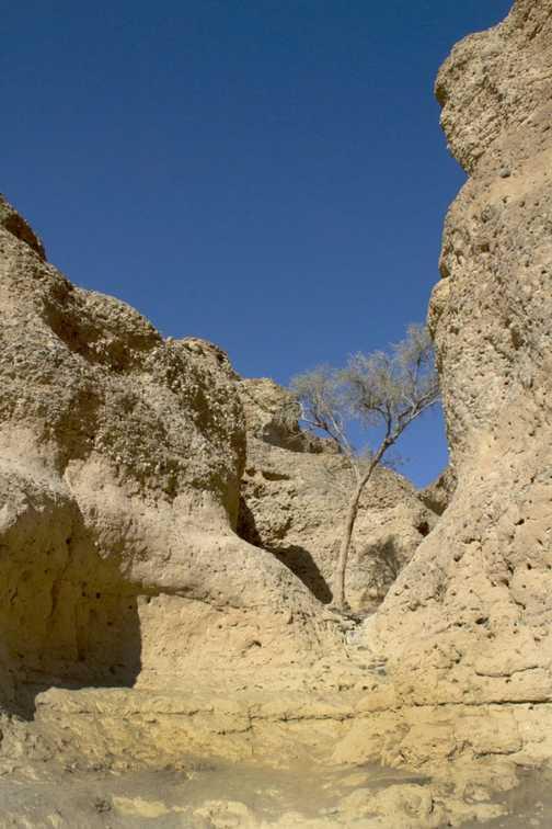 Sesrium Canyon.