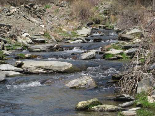 Stream above Berchules