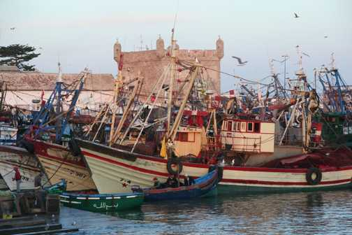 Fishing boats in the harbour, Essaouira