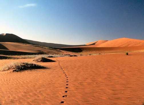 Walking to Dead Vlei