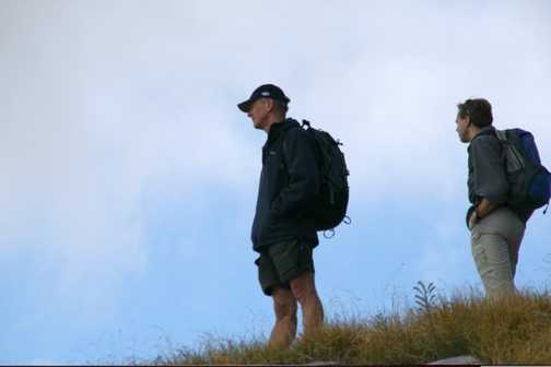 Surveying the land