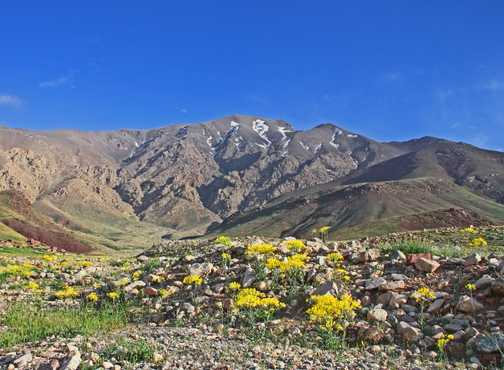 Late aftetrnon in the High Atlas